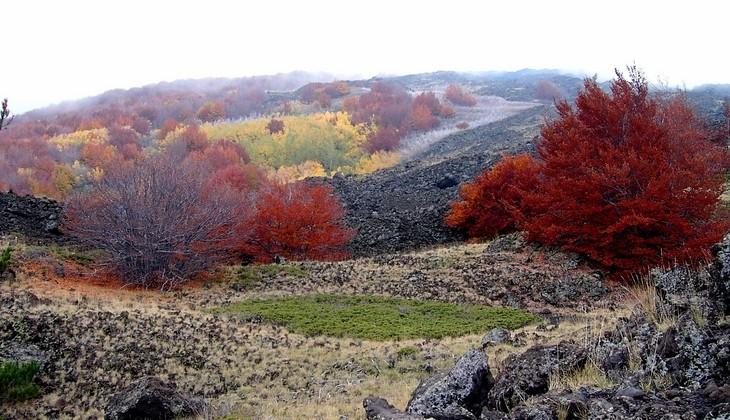 Trekking Eolie - natural turism