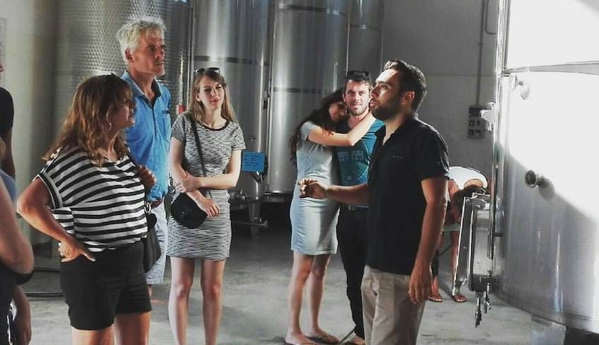 wine tour trapani -