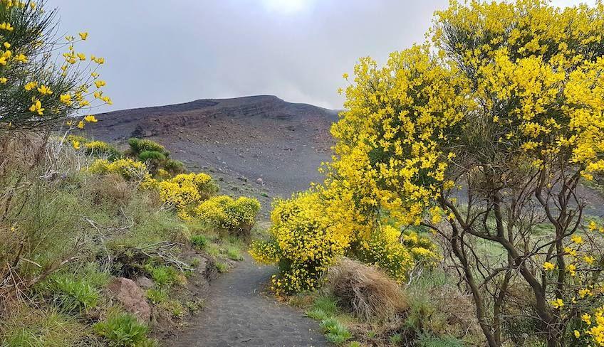 stromboli excursions - trekking stromboli
