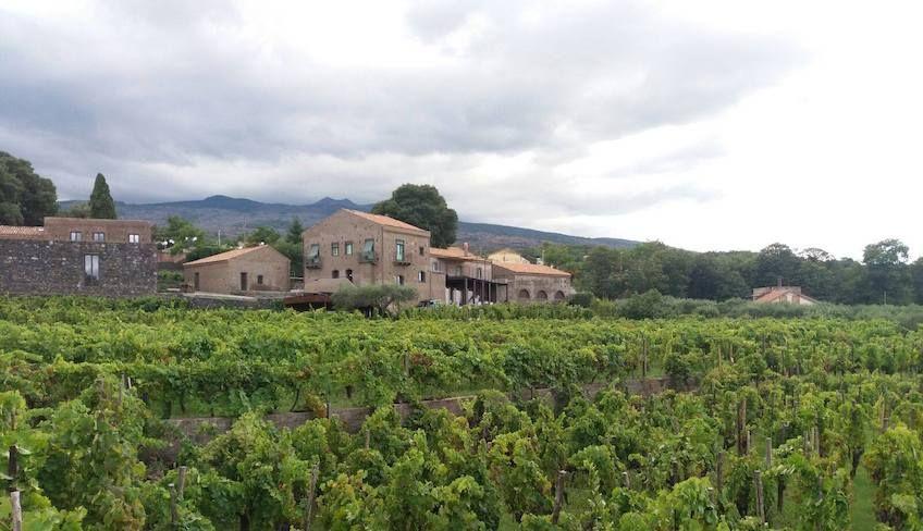 Etna wine tour -