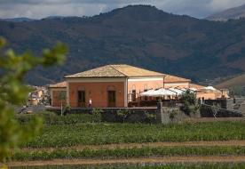 wine tasting etna