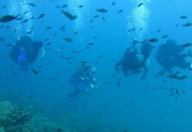 Sport & Adventure Holiday in Sicily -Diving Siracusa