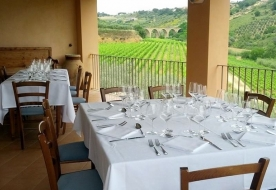 Cellars & Wineyards Holiday in Sicily -Wine tasting Sicily