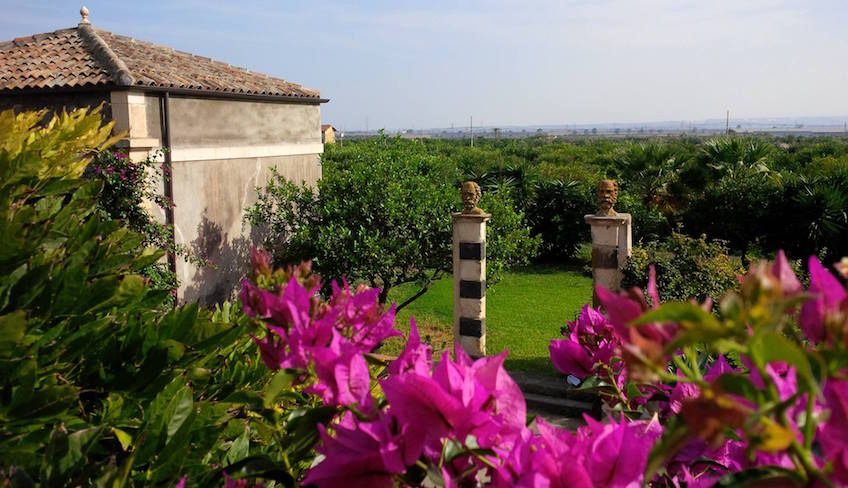 Wine tasting Catania - winery tour sicily