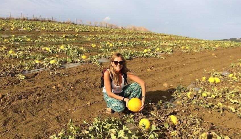 Visit Segesta - quad rental Sicily