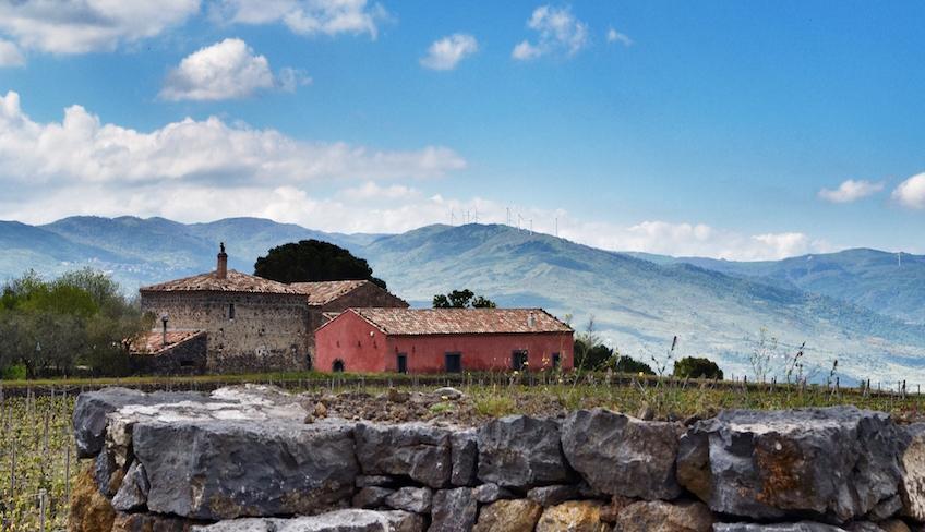 Cellars & Wineyards Holiday in Sicily -Wine tasting cellar