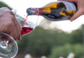 Wine tasting cellar - sicily wine region