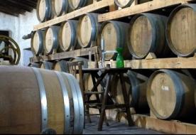 Wine tasting Sicily - sicilian wines