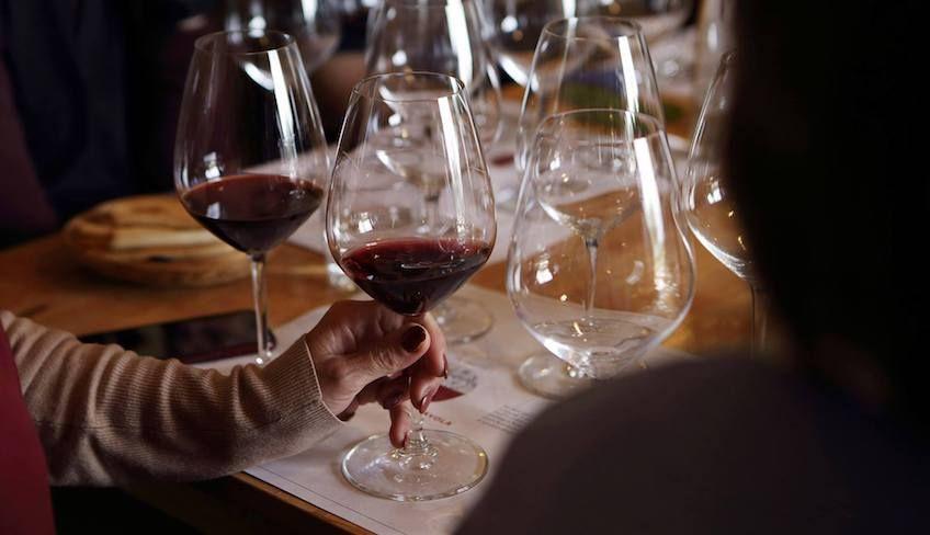 wine tasting cellar -