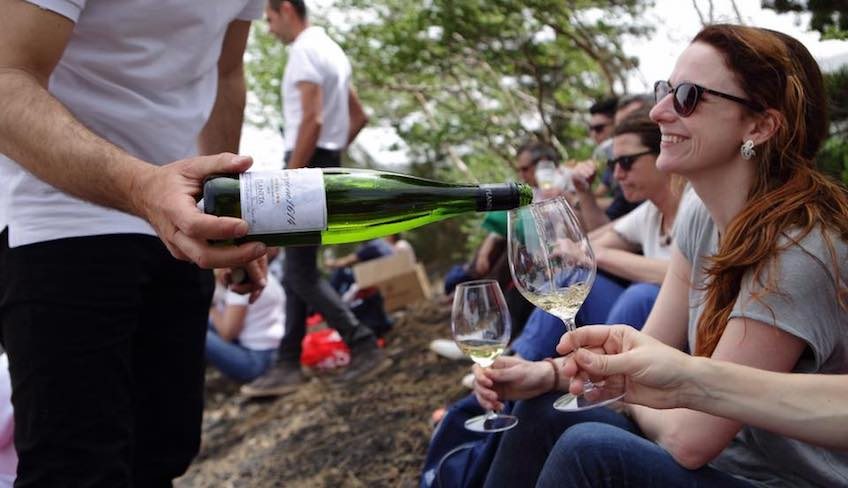 wine tasting cellar Mt Etna