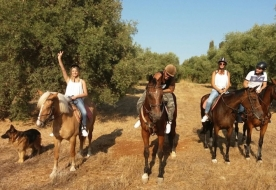 horse riding in sicily -