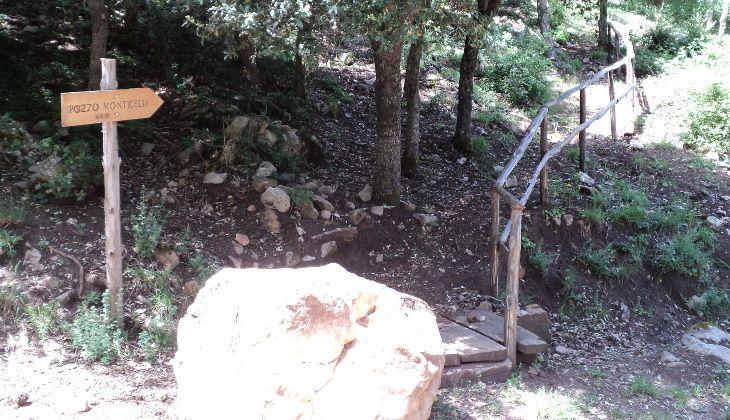 Sicilian park -
