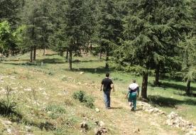 Sicilian park - trekking madonie