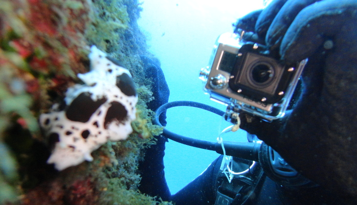 diving holiday - Sicily Sport & Adventure - Holiday in Italy