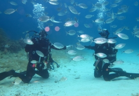 Diving Holiday in Sicily - scuba diving in Italy