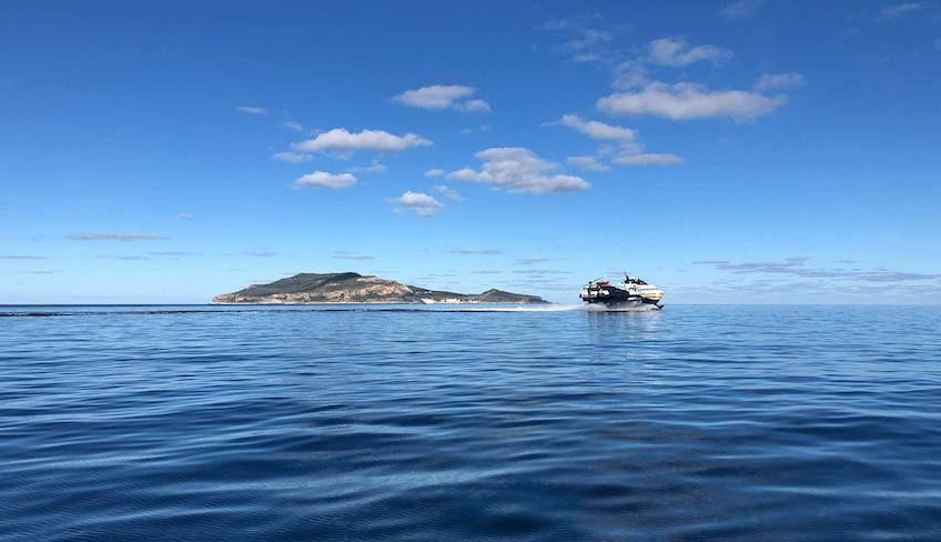 Egadi islands tours  -
