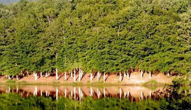 Tour Sicily - Sicily nature parks